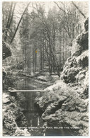 Lydford Gorge, The Pool Below The Gorge - Lynmouth & Lynton