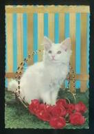 Gato. Ed. C. Y Z. Nº 6322. Dep. Legal B. 15727-III. Nueva. - Gatos