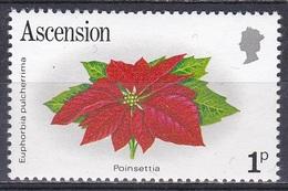 Ascension 1981 Pflanzen Plants Blumen Blüten Flora Flowers Weihnachtsstern Ponsettia Euphorbia, Mi. 276 ** - Ascension