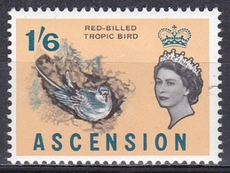 Ascension 1963 Tiere Fauna Animals Vögel Birds Oiseaux Aves Uccelli Seevögel Seabirds Tropikvogel Tropic Bird, Mi. 84 ** - Ascension