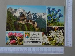 LIECHTENSTEIN - GRUPE AUS DEM -  FURSTENTUM -   2 SCANS  - (Nº27063) - Liechtenstein
