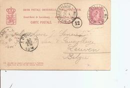 Luxembourg ( EP De 1896 De Wasserbillig Vers La Belgique à Voir) - 1895 Adolphe Right-hand Side