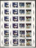 14x TCHAD - Space - Apollo 11 - 12 - Programme Apollo - CTO - Espace