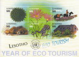 2002 Lesotho Ecotourism Birds Lions Frogs Horses Complete Set Of 2 Sheets MNH - Lesotho (1966-...)