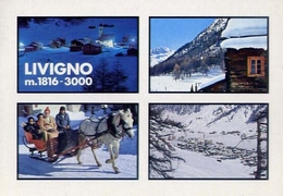 Livigno - Sondrio - 6028 - Formato Grande Viaggiata – E 10 - Sondrio