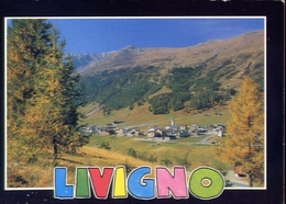 Livigno - Sondrio - 7232 - Formato Grande Viaggiata – E 10 - Sondrio