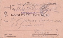 Feldpostkarte  K.u.k. Infanterie Regiment Freiherr Von Laudon Nr. 29 Nach Pettau - 1915 (38571) - 1850-1918 Imperium