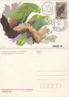 PMAV051 - Yellow-crowned Amazon Or Yellow-crowned Parrot (Amazona Ochrocephala) - Maximum Card / Carte Maximum - Parrots