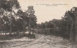 ***  33  ***   LACANAU OCEAN  Route Dans La Forêt - TTB écrite - Autres Communes