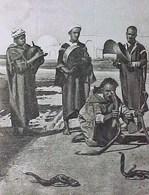 Cpa Serpents , Métier CHARMEUR De SERPENT , Musiciens , Instruments Musique 1926 , SNAKE CHARMERS  EDITEUR CAP - Afrique