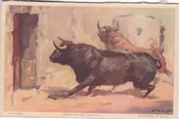 APARTADO. SEPARATION DES TAUREAUX. JDP. TOROS, BULLS CORRIDAS. CIRCA 1900s - BLEUP - Corrida