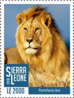 Z08 SRL1802local02a Sierra Leone 2018 Lions MNH ** Postfrisch - Sierra Leone (1961-...)