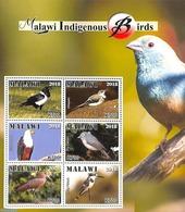 Malawi 2018 Indigenous Birds 6v M/s, (Mint NH), Birds - Birds Of Prey - Kingfishers - Malawi (1964-...)