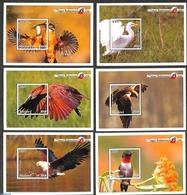 Malawi 2018 Indigenous Birds 6 S/s, (Mint NH), Birds - Birds Of Prey - Kingfishers - Malawi (1964-...)