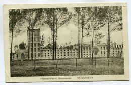 CPA - Carte Postale - Belgique - Nederheim - Chokolat Fabrik Rossmeulen - 1923  (SV6841) - Tongeren