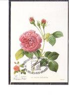 2375 Belgica 90 - Fleurs - Rose Hélène - Maximum Cards