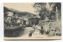 Sidossi-Niolo, Corse - Village, Femme Avec Chèvres, Goats - CPA De J. Moretti No. 559 - France