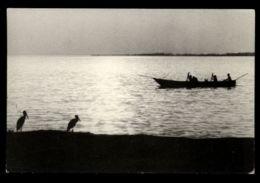 C326 UGANDA - LAKE IDI AMIN DADA CIRC. 1975 - Uganda