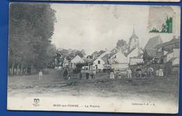 MISY-sur-YONNE   La Prairie   Animées          écrite En 1908 - France