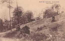 Mont De L'Enclus - Kluisberg - Petje Et Metje - Circulé - Animée - TBE - Mont-de-l'Enclus