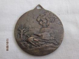 Medaglia Carri Armati Della Somalia 1936 - Italy