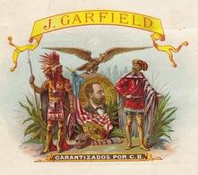 1893-1894 Grande étiquette Boite à Cigare Havane GARFIELD Indien Aigle - Etiquettes