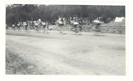 Photo Ancienne  Course Cycliste , Tour De France 1956, Calanque Des Issambres - Sports