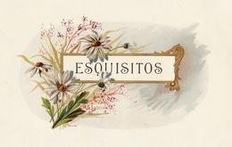 Grande étiquette Boite à Cigare Havane EXQUISITOS - Etiquettes