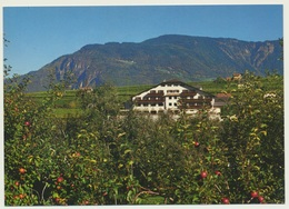 AK  Eppan Gasthof Weinegg Girlan - Italien