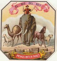 Fin 1800 étiquette Boite à Cigare El Rio Del Rey - Etiquettes
