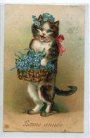 CHATS 0002 Chat Apportant Fleurs Pensées Bonne Année GAUFREE EMBOSSED RELIEF   1910 écrite Timbrée - Chats