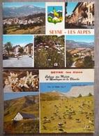 SEYNE LES ALPES  (04). LOT DE 8 CPM . ANNEES  1970-80.TOUTES EN PHOTOS ANONCE. - France