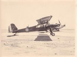 PHOTO 24,2 X 18 Cm DJIBOUTI En 1954/1956 - AVION MAURANE CRIQUET M501 Ou 502 Et JU52 Junkers @ FRANCE MILITAIRE AVIATION - Aviation