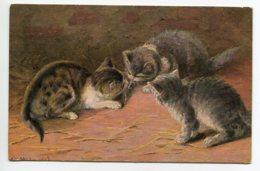 CHATS 0043 Trio De Petits Chats Chatons Avec Une Souris ? Illustrateur - Chats