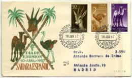 Sahara Nº 133/35 En Sobre - Guinea Española