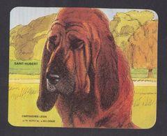 Chien Saint Hubert Chasse Hunting Cartouche Legia FN Hersyal Ancien Autocollant Sticker - Autocollants