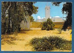 ALGERIE EL OUED 1961 - El-Oued