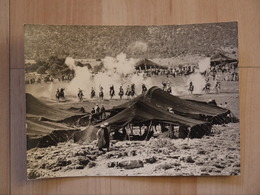 IFRANE FANTASIA SE DEROULANT DEVANT LES TENTES BERBERES DU PAYS ZAIAN - Maroc