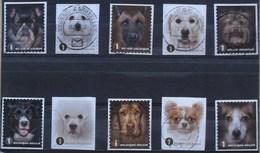 België 2014 Honden  Chiens - Used Stamps
