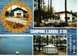 40 Parentis En Born Vers Biscarrosse N°6519 Camping De L'Arbre D'Or Et Lac VOIR ZOOM Citroën GS Coupé Ford Taunus - Biscarrosse