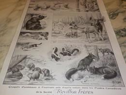 ANCIENNE PUBLICITE MAGASIN  MAISON REVILLON FRERE FOURRURE 1915 - Publicités