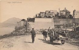 I19 - 20 - CALVI  - Corse - La Citadelle - Calvi