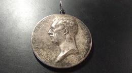 Médaille Argentée. Société Royale. Le Cheval De Trait Belge. 1934. Albert Protecteur De La Société - Belgique