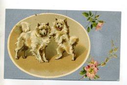 CHIENS 171 Elegants Chiens  Sur Pattes Arrieres Illustrateur écrite En 1904 - Hunde