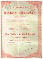 Lot De 3 Titres: 1 Charbonnages De Biélaïa 1895 -  2 Hauts Fourneaux De Bélaïa (action Ordinaire Et Privilégiée) 1899 - Russie