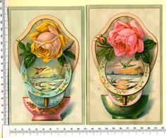 2 CHROMOS LITHOS.GRAND FORMAT.....PAYSAGES D'HIVER...ROSES....OISEAUX..... RELIEF - Vieux Papiers