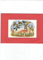 MEDICI PUBLISHED MOLLY BRETT  BLACKBERRY TIME  CARD NO PK 418   PROBALLY PUBLISHED IN THE 60S - Illustrators & Photographers