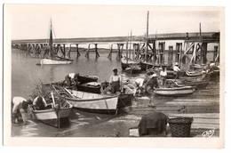 85 VENDEE - L'AIGUILLON SUR MER Un Coin Du Port, Traitée En Carte Photo - Autres Communes