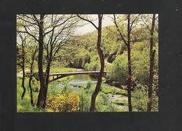 ROUTE LA ROCHE - HOUFFALIZE - Pont De Rensiwez Sur Ourthe (4529) - Houffalize