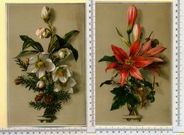 2 CHROMOS LITHOS CARTONNÉES.....GRAND FORMAT...H  20  Cm.....FLEURS...ROSES DE NOEL...LYS - Vieux Papiers